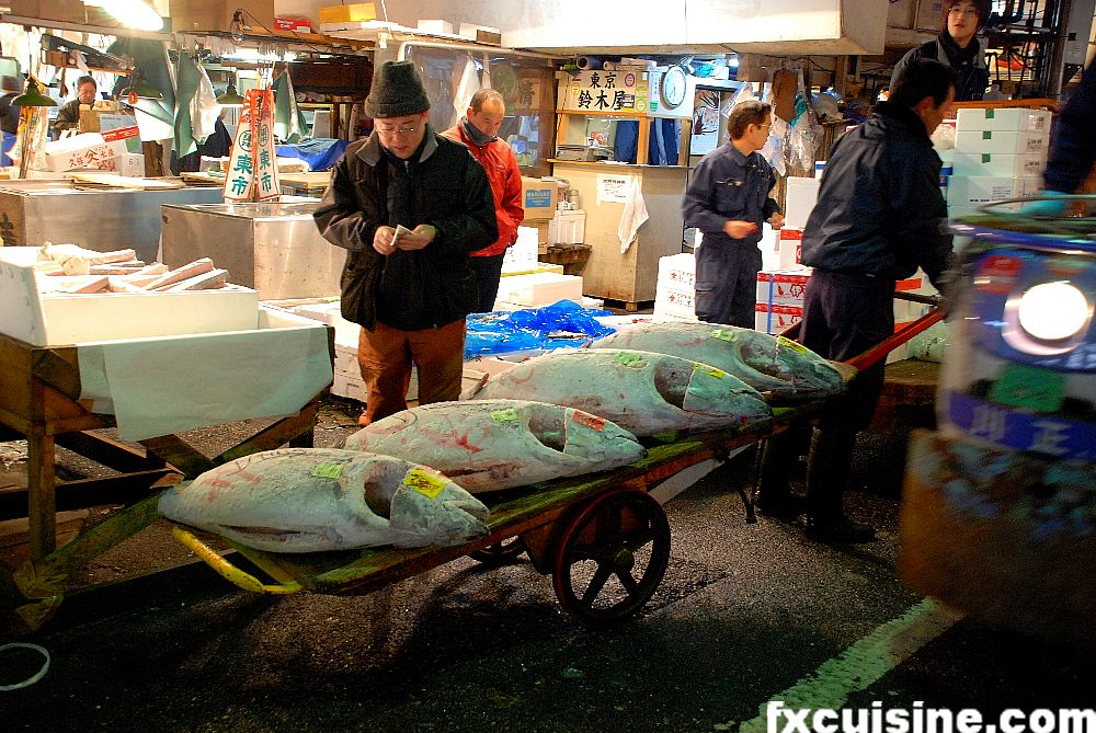 Tsukiji wholesale fish market in tokyo for Tsukiji fish market japan